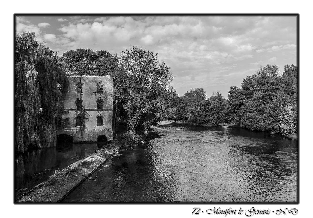 Montfort le Gesnois - 72