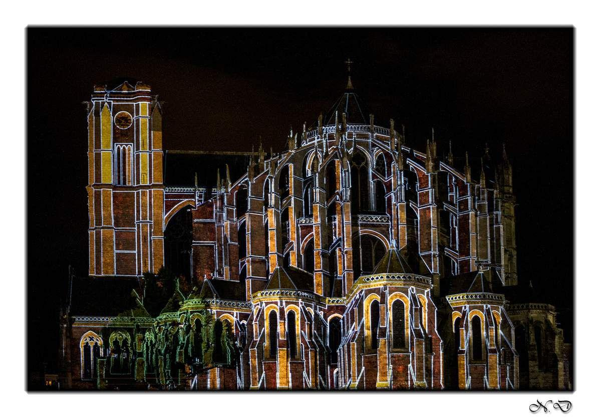 La nuit des chimères,la Cathédrale Saint-Julien se pare de belles lumières.