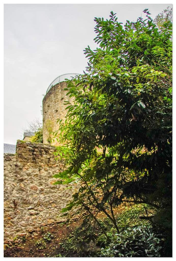 Enceinte du moyen-âge, muraille gallo-romaine du Mans, côté Sarthe.
