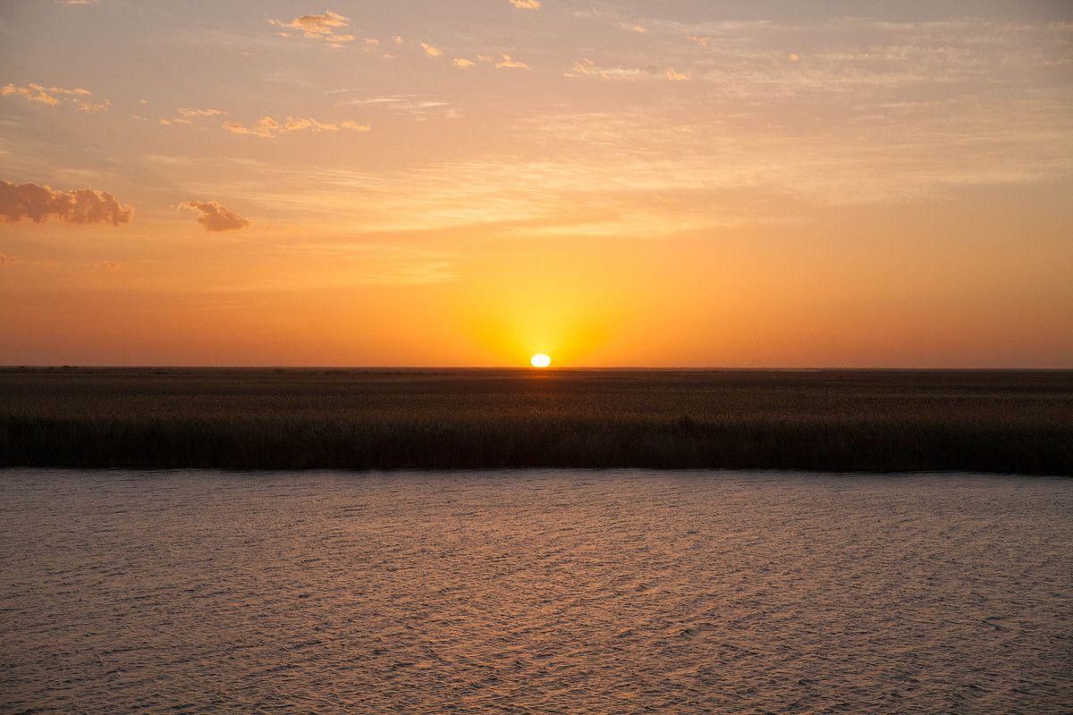 Sénégal 2016 - Les rives du fleuve