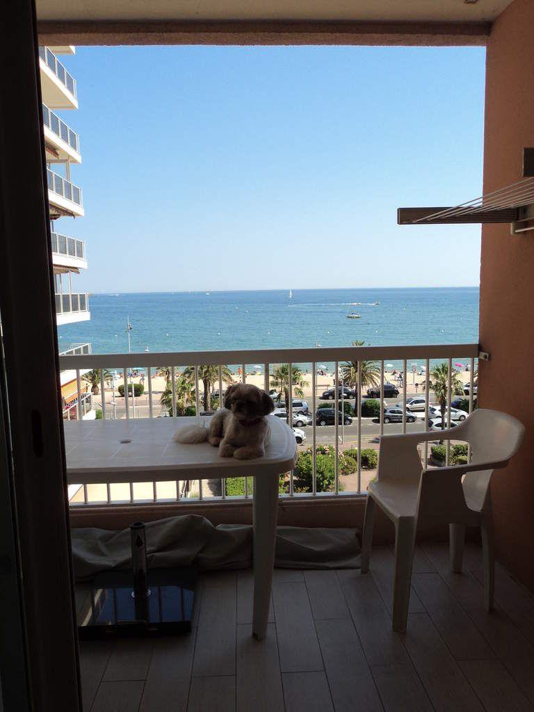 Iubi a trouvé sa place sur le balcon !