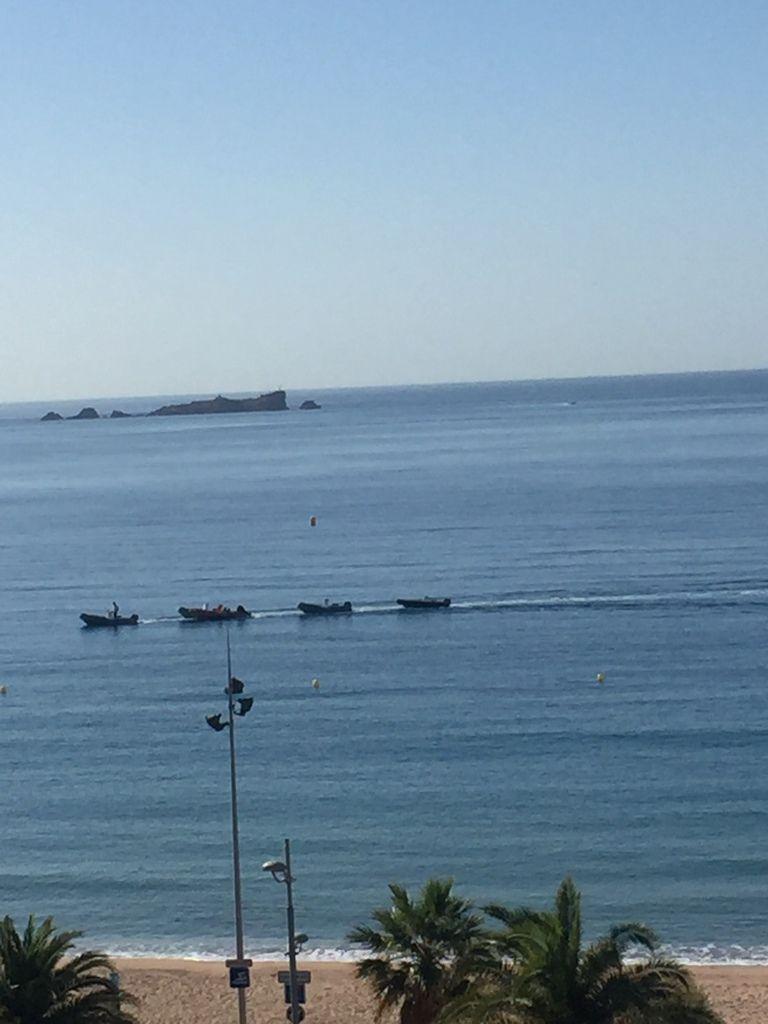 J'adore voir les bateaux passer tous les matins, on dirait une cane et ses petits qui la suivent !