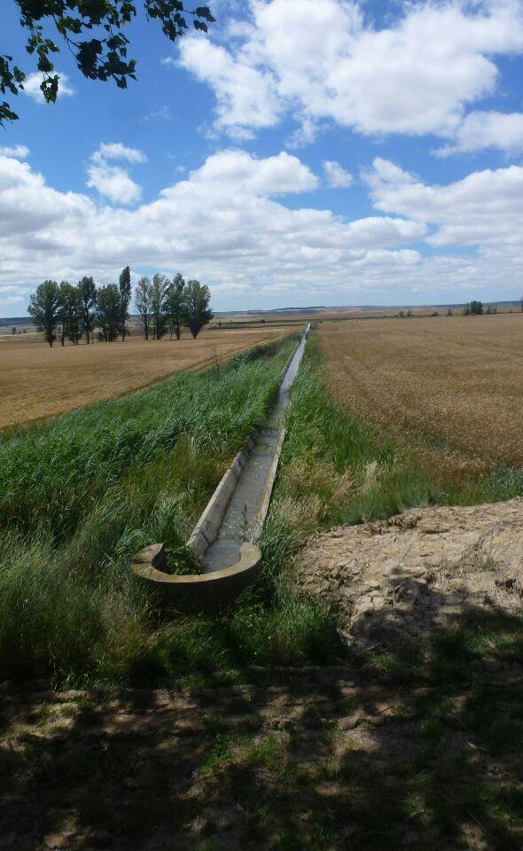 le canal et l'irrigation