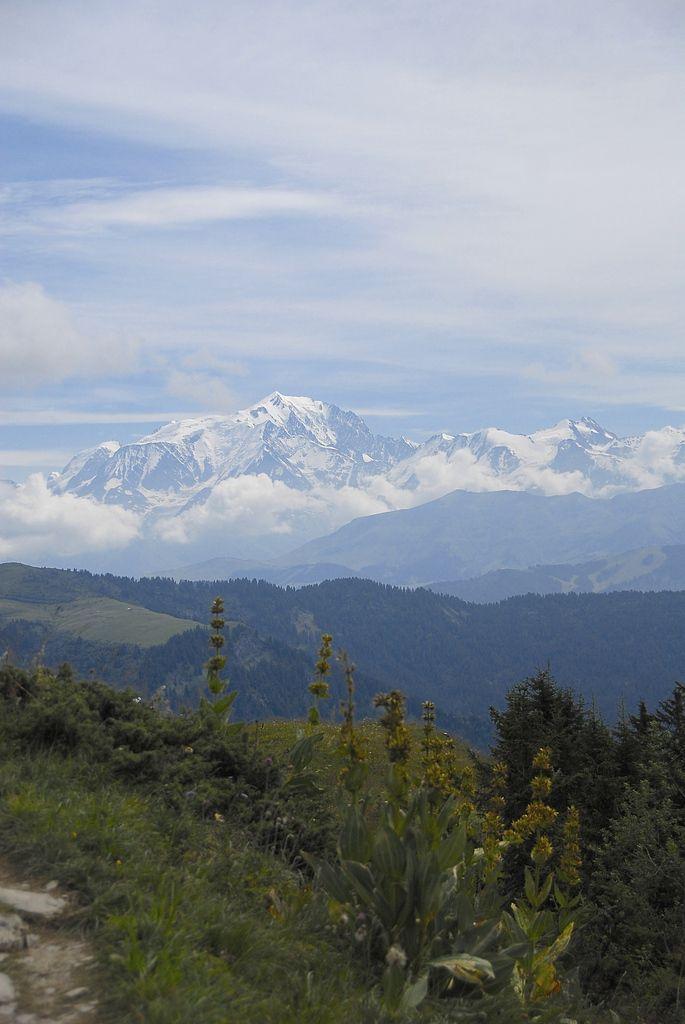 Massif du Mont Blanc,panorama.
