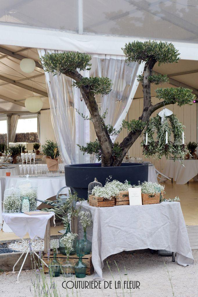 Table d'accueil, avec plan de tables, mes cages vintage, mes caisses anciennes et mon beau lustre ancien.... Le tout avec du gypso et de l'olivier !
