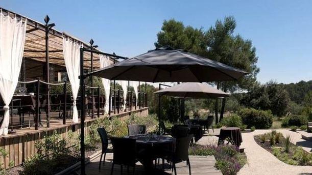 Domaine de Buzarens, Restaurant Le Cygory, Mas des Violettes, La Villa du Parc, Le Clos des Oliviers, Le Mas des Filles, Le Mas D'Aurou