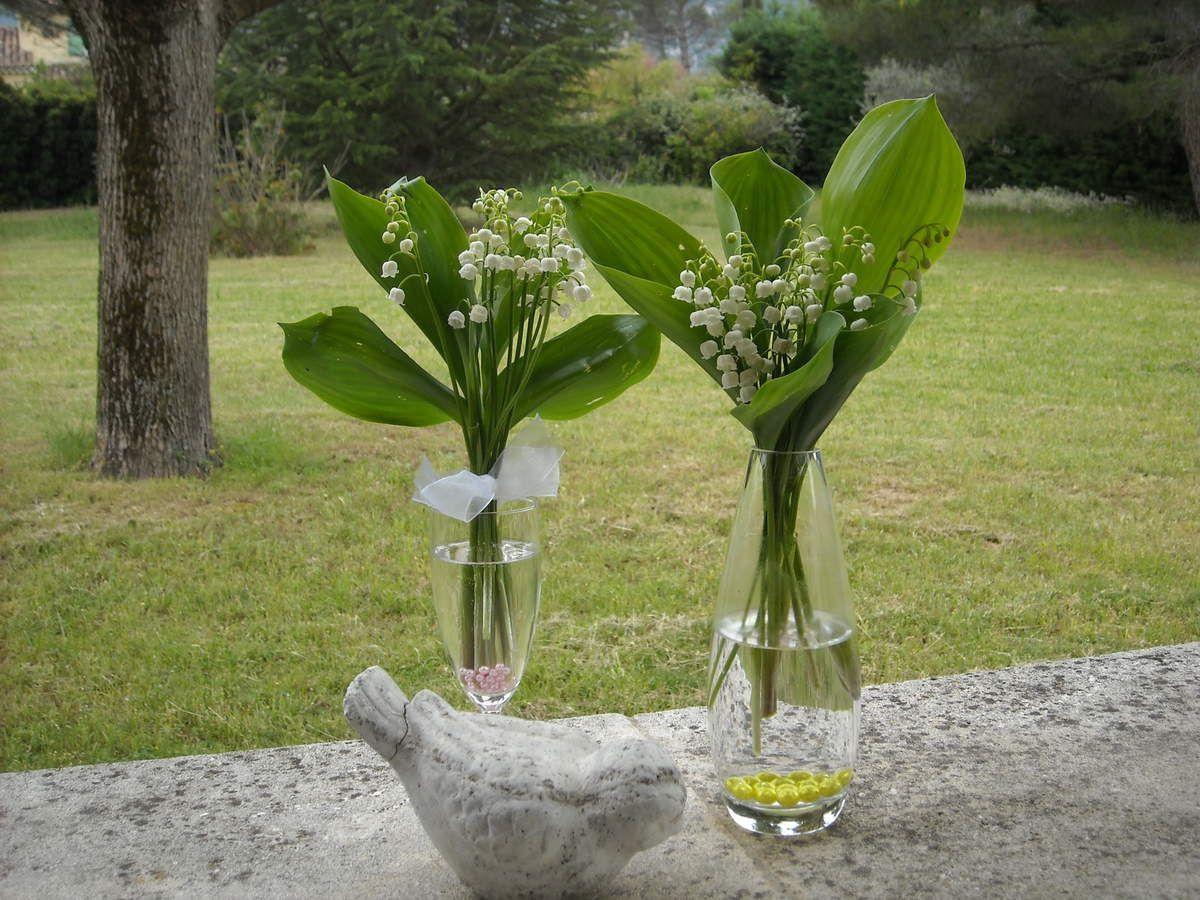 Muguet du luberon pour vous for Jardin pour vous