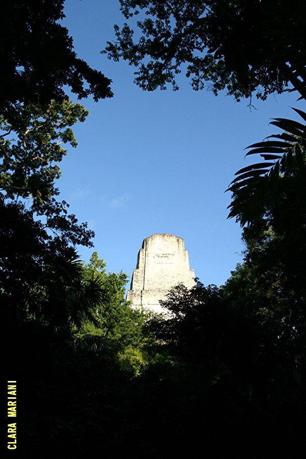 La pyramide du Grand Jaguar vue depuis la jungle