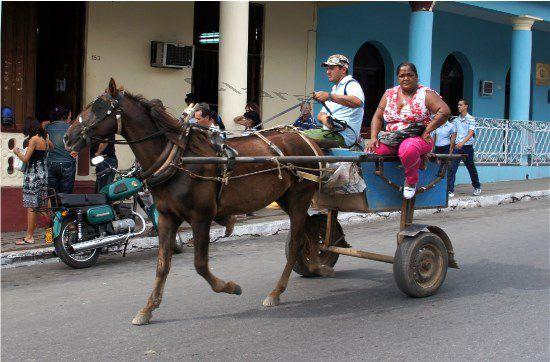 La carriole -Pinar del Rio- CUBA