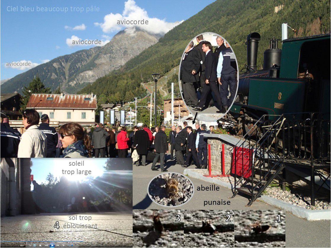 Vendredi 25 septembre 2015, 17h42, recul des glaciers à Chamonix / Manuel Valls 1er ministre à son retour de la Mer de glace / punaise éblouie tombée sur le dos / abeille éblouie errant au sol