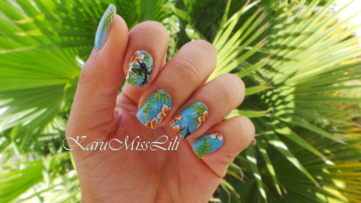 colibris et hibiscus
