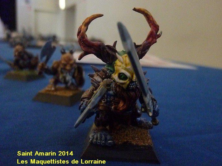 PHOTOS EXPO SAINT AMARIN 2014 - 4 et fin -