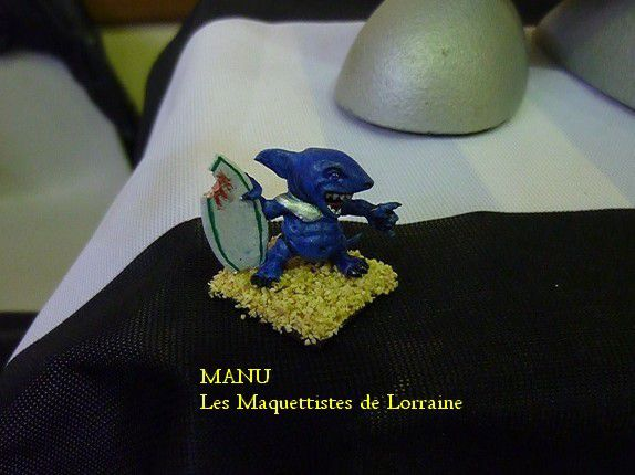 REQUIN SURFEUR par MANU
