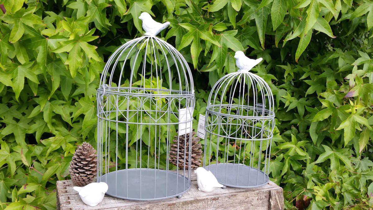 cage a oiseau deco pas cher awesome pas cher belle multicolore perroquet cage oiseaux dcoratifs. Black Bedroom Furniture Sets. Home Design Ideas