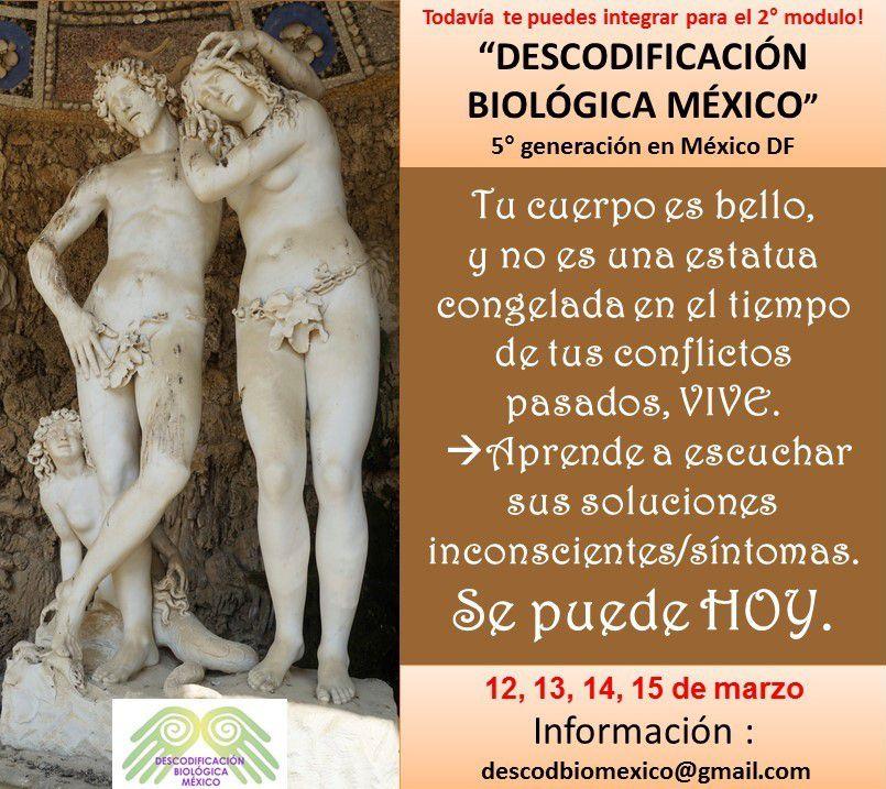 Un aprendizaje paulatino, experiencial, supervisado, personalizado: Integrate en el 2° modulo en Descodificación Biológica México, marzo13, 14, 15.