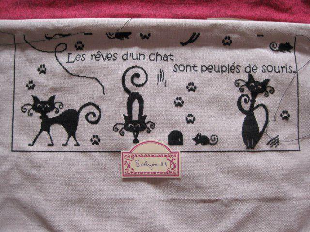 SAL &quot&#x3B;Les rêves de chats&quot&#x3B; - objectif 4 - les photos