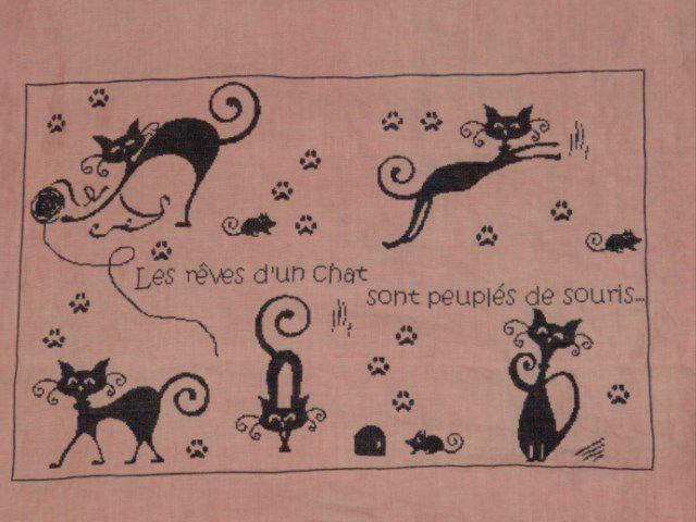 SAL &quot&#x3B;Les rêves de chats&quot&#x3B; - objectifs 6 et 7 - Les photos