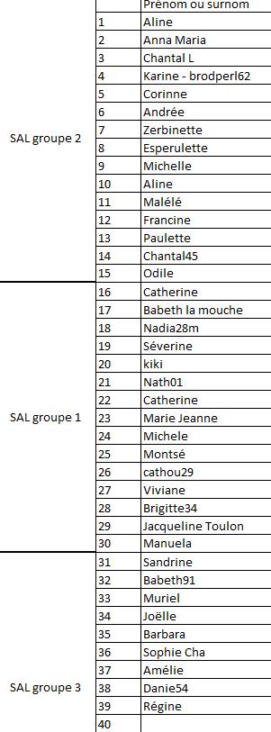 SAL de NOEL 2016 : Le point au 23 octobre et la liste des participantes