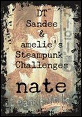 SANDEE &amp&#x3B; AMELIE'S :Notre challenge d'avril