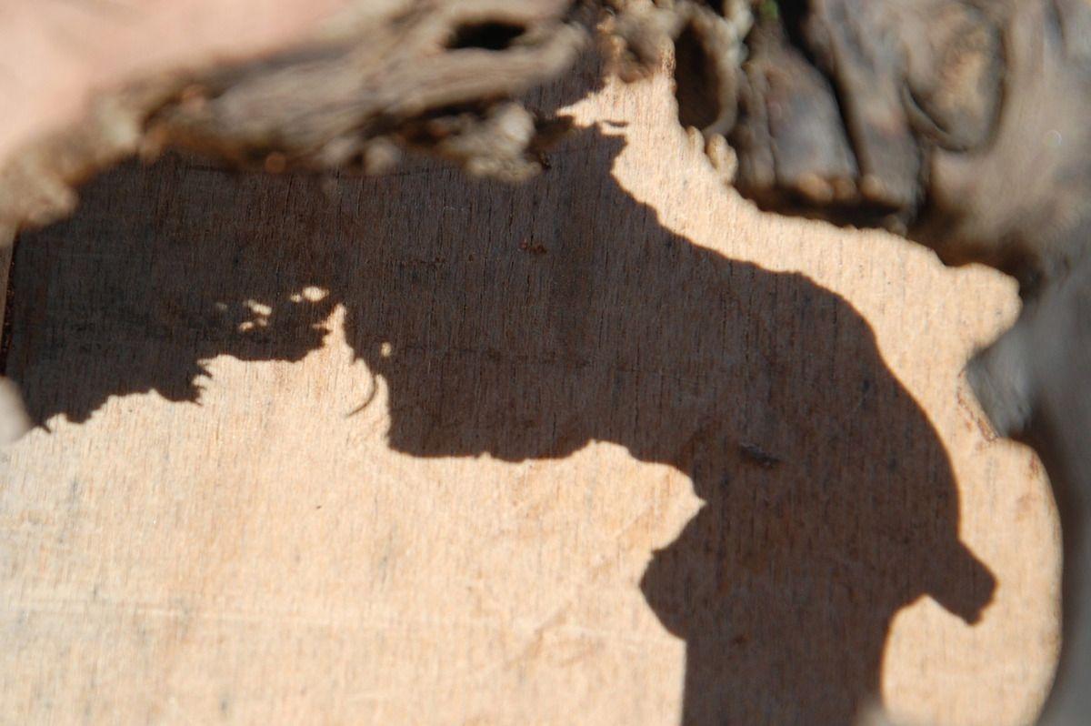 La beauté du bois de vigne c'est toujours du cadeau.