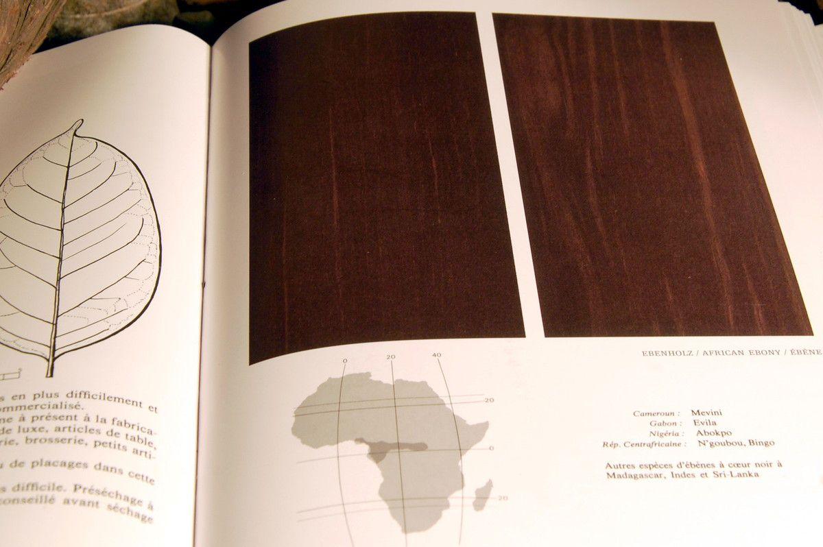 L'ébène c'est l'Afrique .