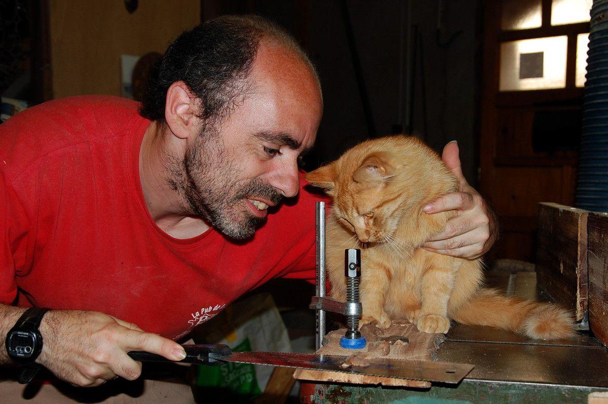 Scier bois et aimer chat