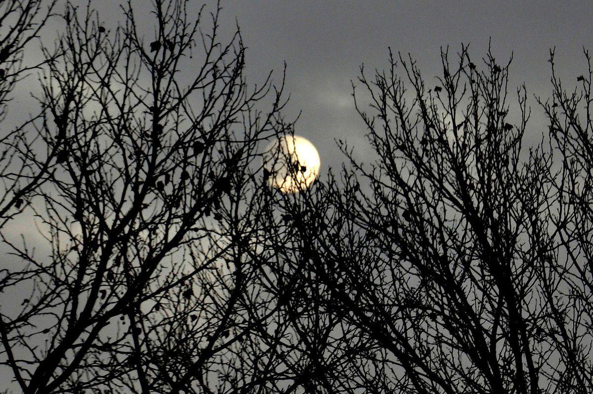 Le soleil regarde et perce les nuages.