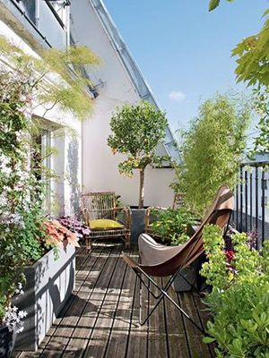 Am nagement de balcons terrasses paris webarchitecte - Amenagement balcon paris ...
