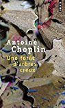 Une forêt d'arbres creux d'Antoine Choplin