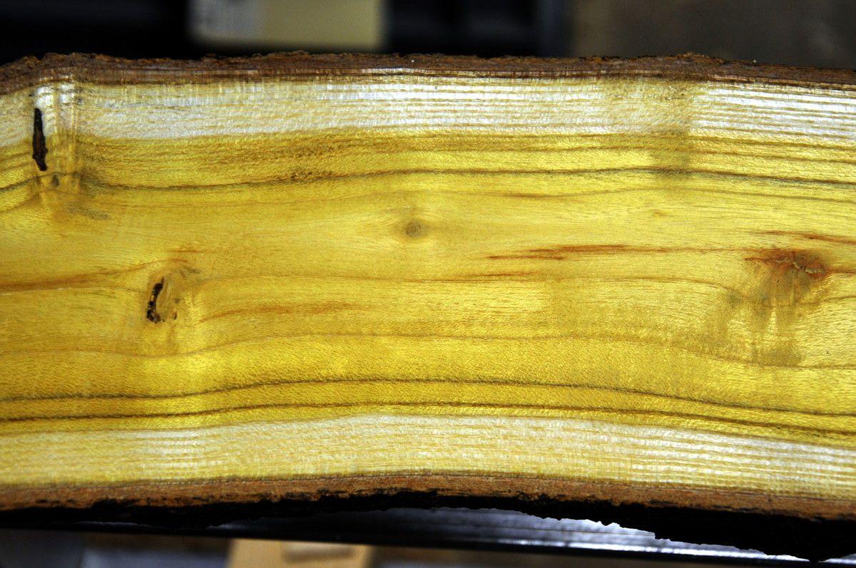 le plus beau des bois jaunes l 39 exposition de l 39 entre f tes. Black Bedroom Furniture Sets. Home Design Ideas