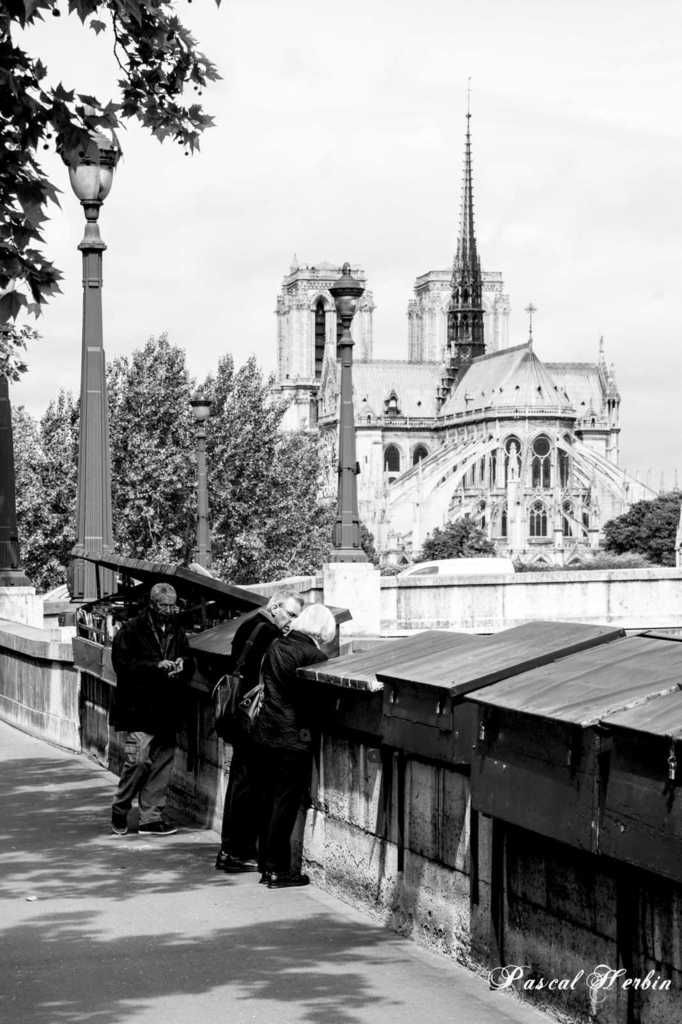 From ST Michel to Notre-Dame