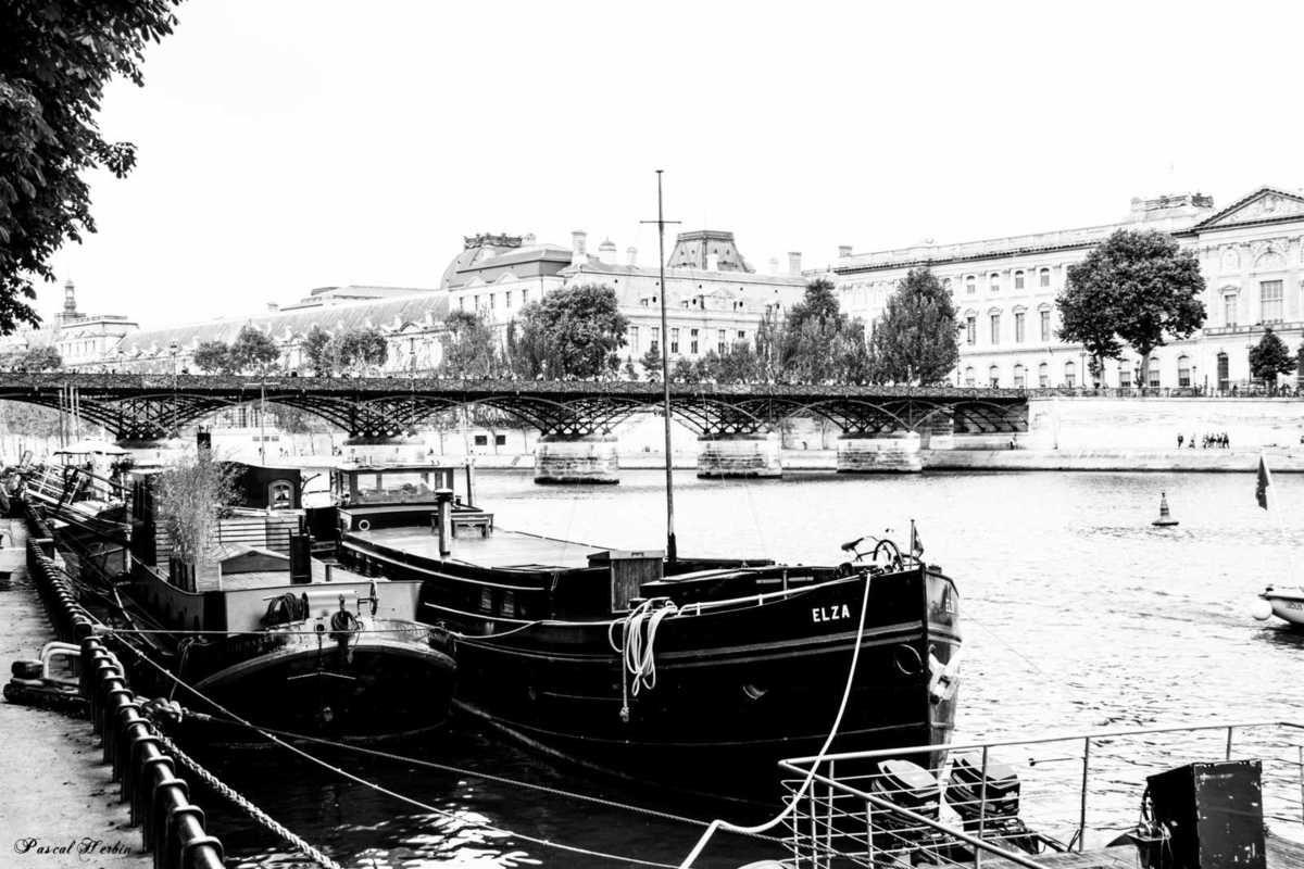 Seine's banks