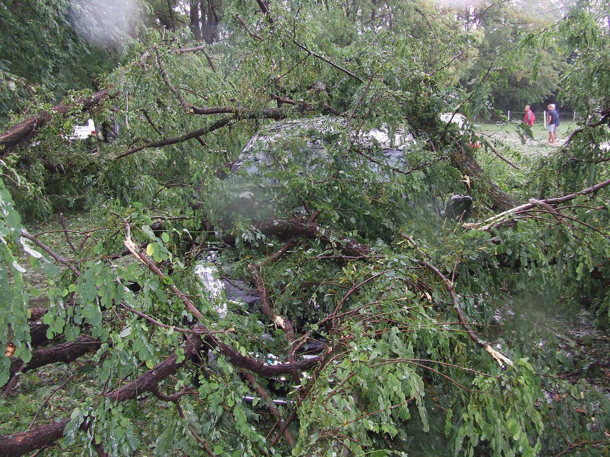 les jeux avant,le kangoo sous les arbres,la terrasse,sous la poutre rouge l'entrée des jeux: la subaru, au fond la partie écroulée sous les arbres