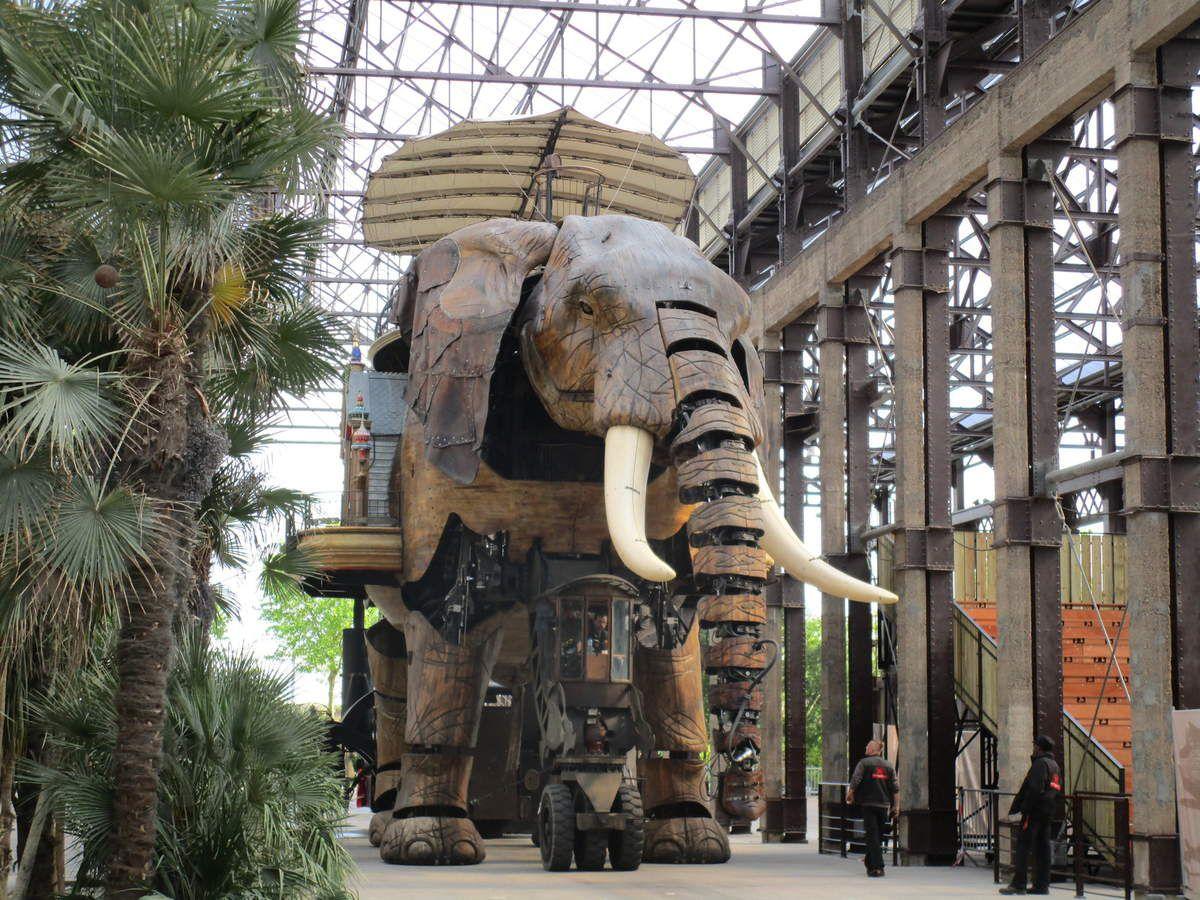 un éléphant ça trompe ...