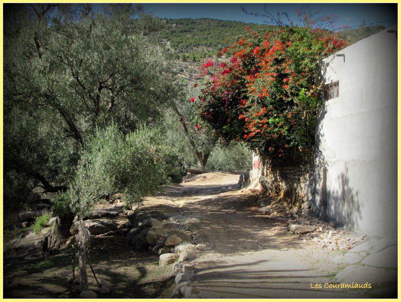 &quot&#x3B;  Maroc d'ici et d' ailleurs............