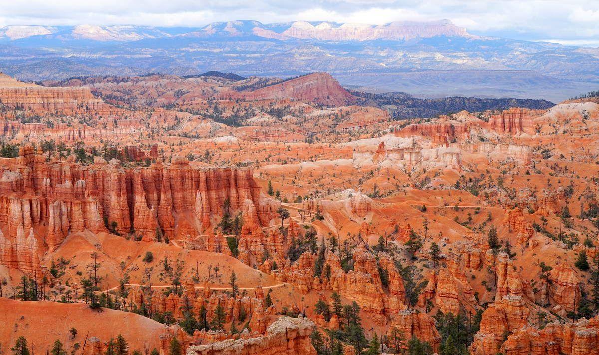 Flamboyance et démesure : les Parcs Naturels de l'Utah et de l'Arizona