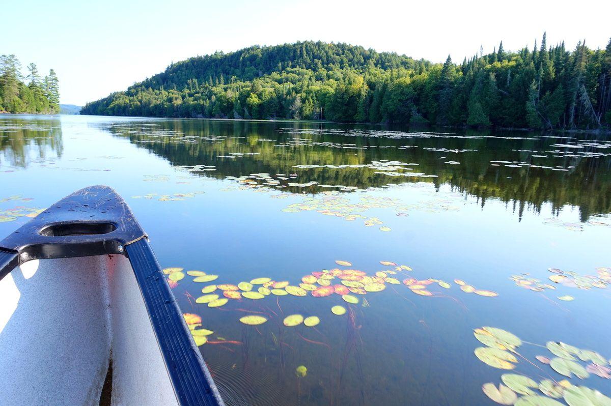 Notre aventure de canot-camping à la Réserve Faunique de Papineau-Labelle : on a bien ramé !