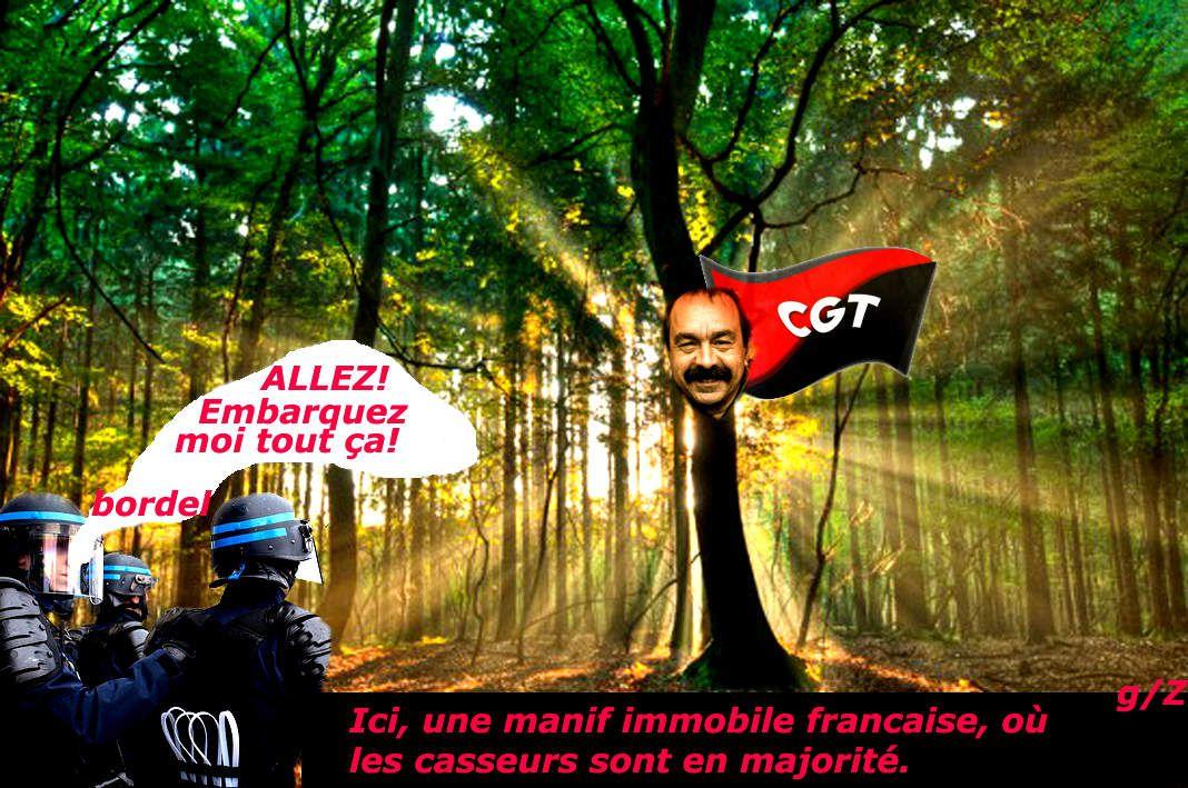 Loi Travail : Le Rassemblement Statique ça Pique !