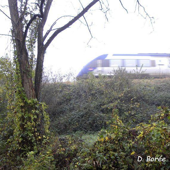 Le train redémarre