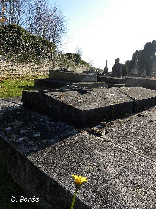 Sur la vieille tombe