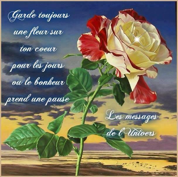 Garde une fleur...