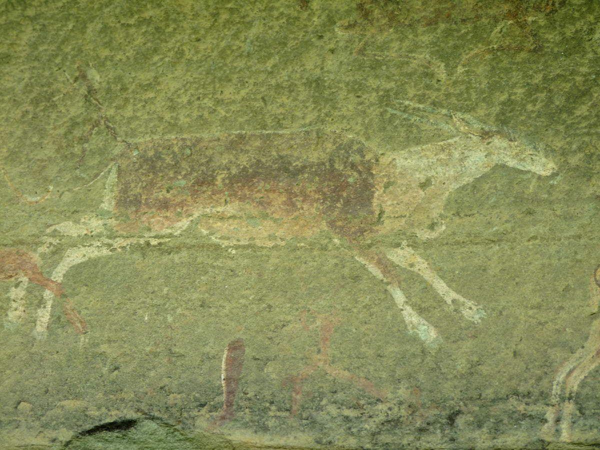 2012 - Le Drakensberg