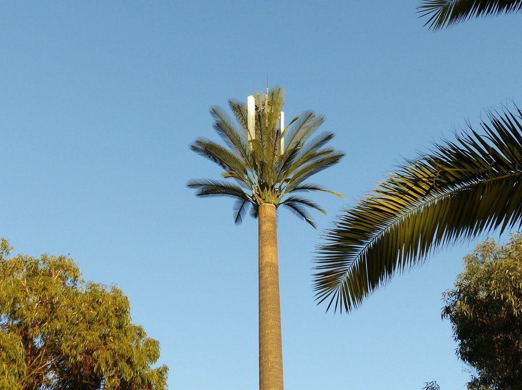Sous le palmier (en plastique) un relais télécom !