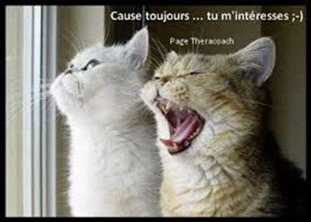 Cause toujours...