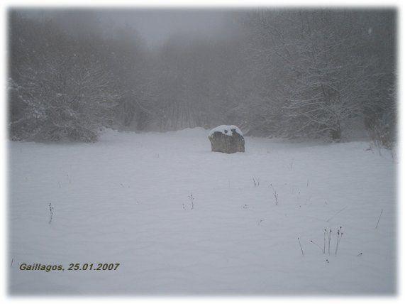 La neige tombe...
