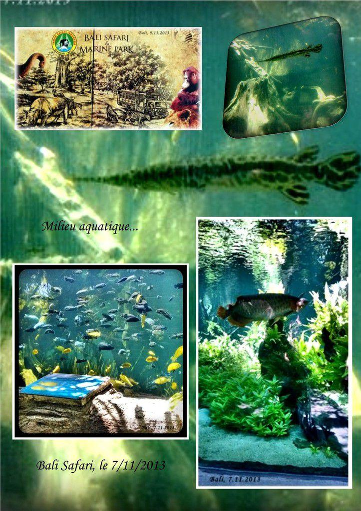 Bali Safari Park...