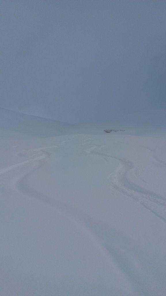 Nous avons refait la trace, donc neige vierge pour notre première descente !