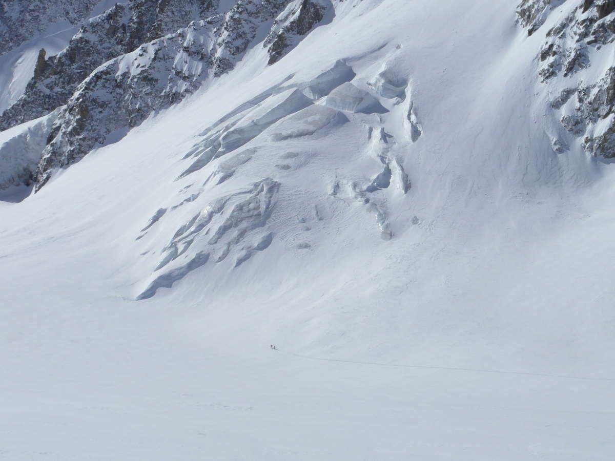 Nico et Garba à la trace sur le glacier