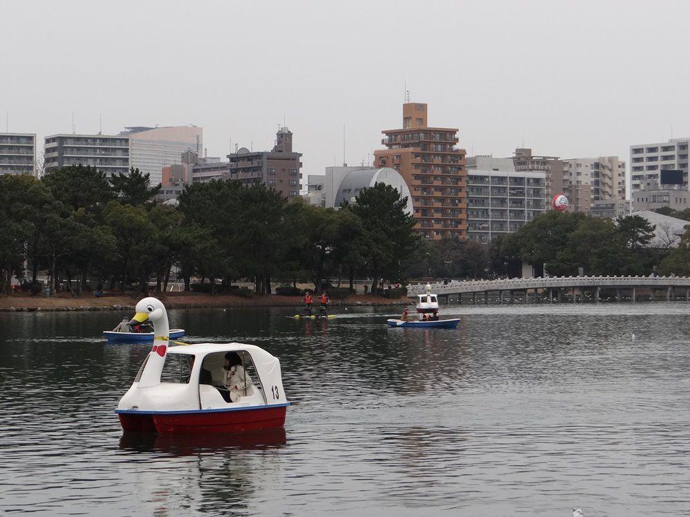 """Parc Ōhori : ce pédalo est-il un hommage à Jean Dujardin dans """"OSS 117 : Rio ne répond plus ?"""""""