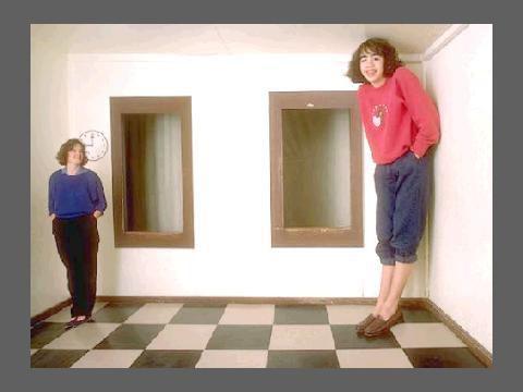 L'illusion des sens. Maya et Ames.